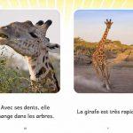Extrait de La girafe